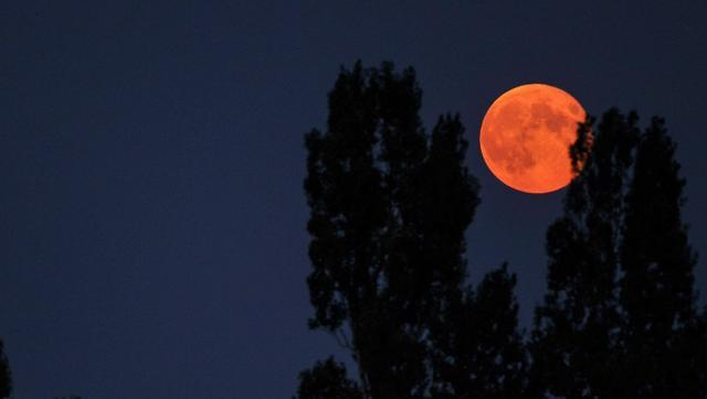 Brightest in 7 decades: 'Supermoon' to grace Earth's skies on November 14