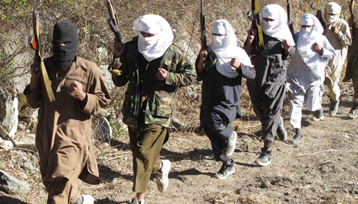 Warning to India, Al Qaeda says will target those who kill