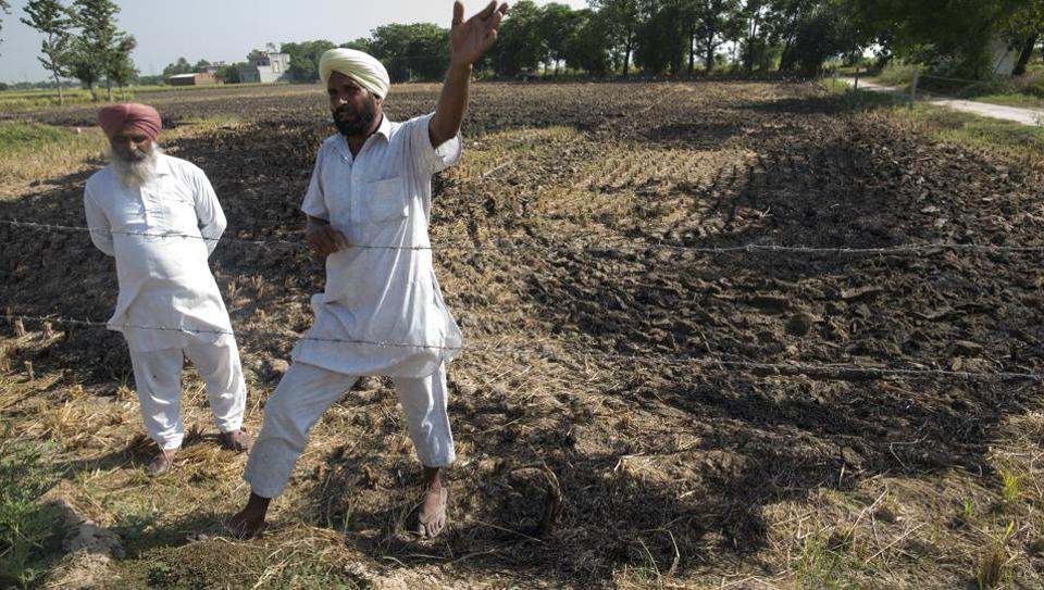 Stubble burning and pollution: It is a deeper question of the dignity and identity of farmers