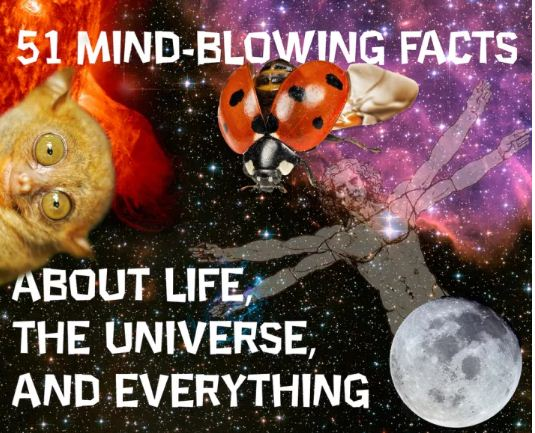 51 Mind-Blowing Facts About Life, The Universe, And Everything.