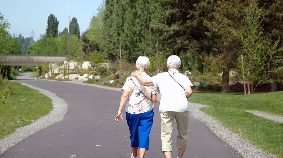 Exposure to air pollution can wipe out the positive benefits of walking among the elderly