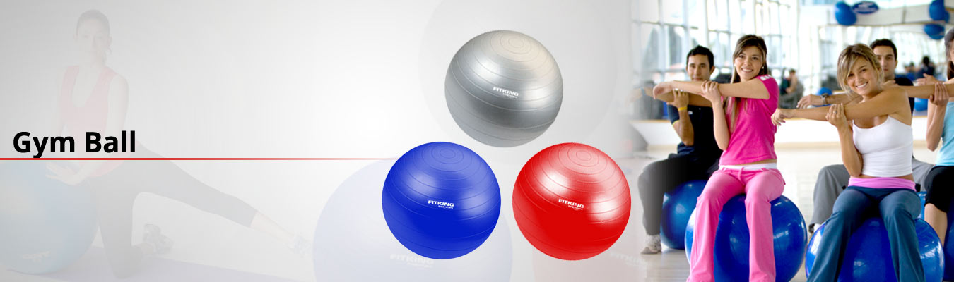 Top 5 Best Exercise Balls in India