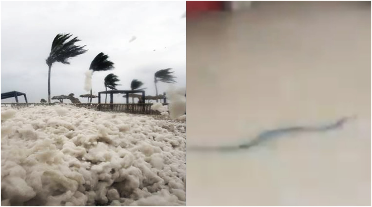 Cyclone Mekunu: Netizens share terrifying videos of the destructive, heavy downpour