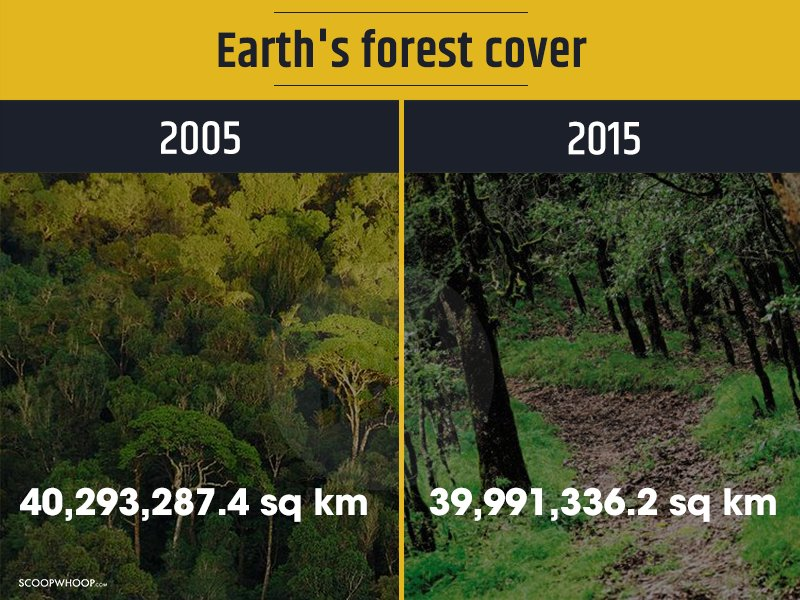 Here's How Much Our Environment Has Degraded In The Last 10 Years & It's High Time We Wake Up