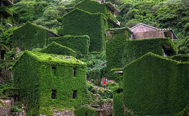 Nature Has Taken Over This Abandoned Village, And The Photos Are Stunning