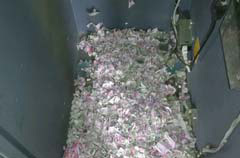 Rats Reportedly Destroy Rs. 12 Lakh At Assam ATM, Twitter Can