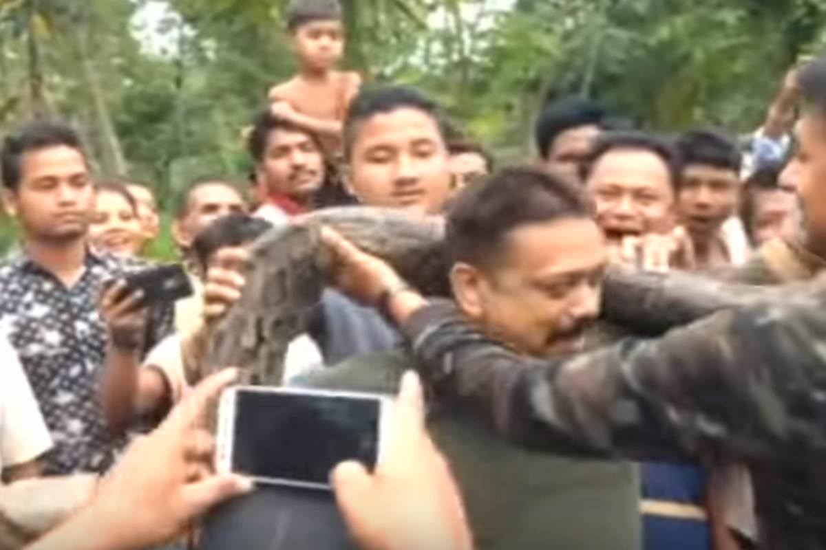 Bizarre! Forest ranger's photo-op with 18-foot python goes horribly wrong; watch what happened next
