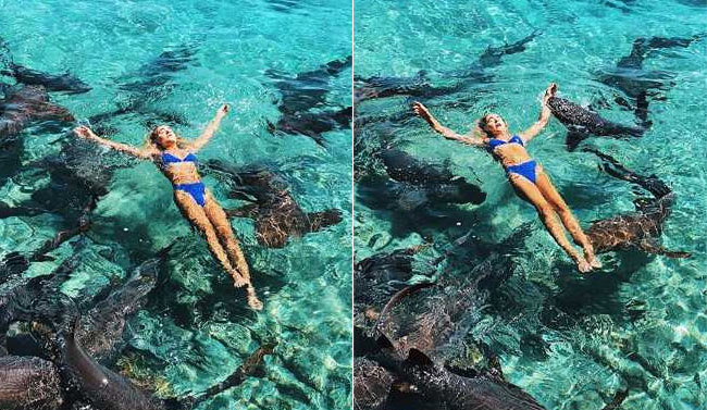 In Pics: Shark Bites Instagram Model During Photo Shoot