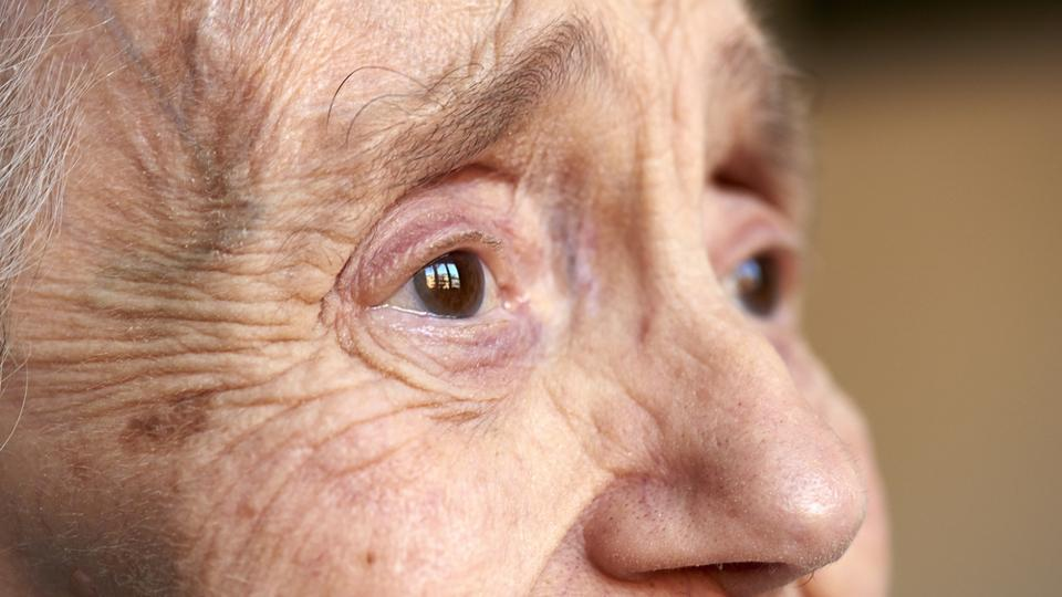 Alzheimer's, Parkinson's disease can be prevented with the help of this gene