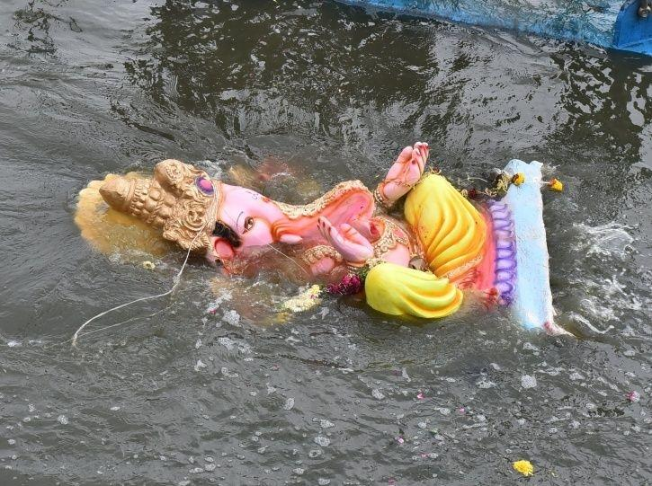 Ganpati Visarjan: Thousands Of Dead Turtles, Fish And Water Snakes Washed Ashore At Dadar, Juhu