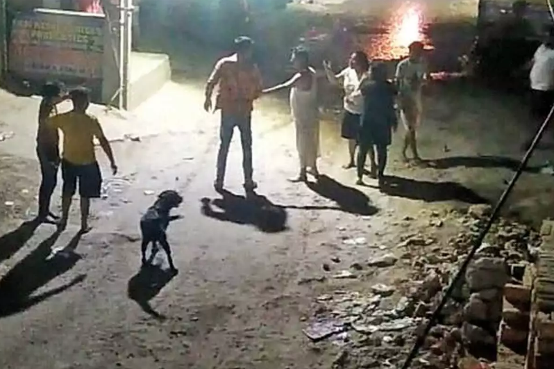 Delhi: Man refuses to say sorry to dog, stabbed to death