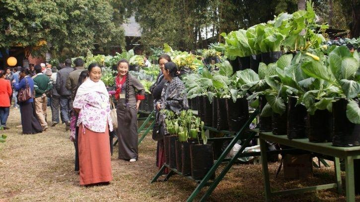 Sikkim Becomes The First 100% Organic State In The World; Wins Future Policy Award 2018