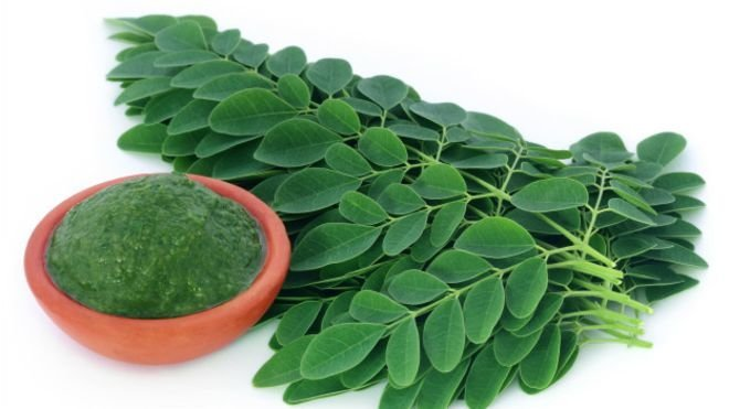 "12 Amazing Benefits Of Moringa For Health. They Call It The ""Tree Of Life"""