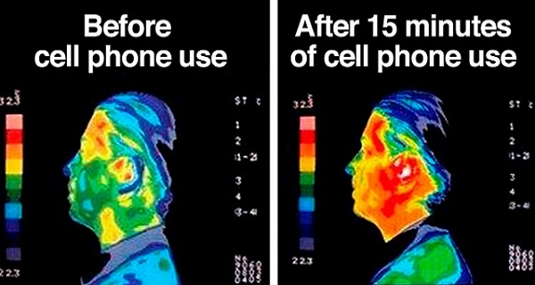 10 Radiation-Emitting Cell Phone Brands You Need to Throw Out Immediately