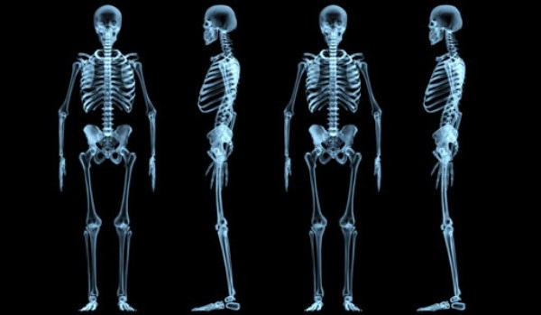 10 Weird And Awesome Facts About Our Bones