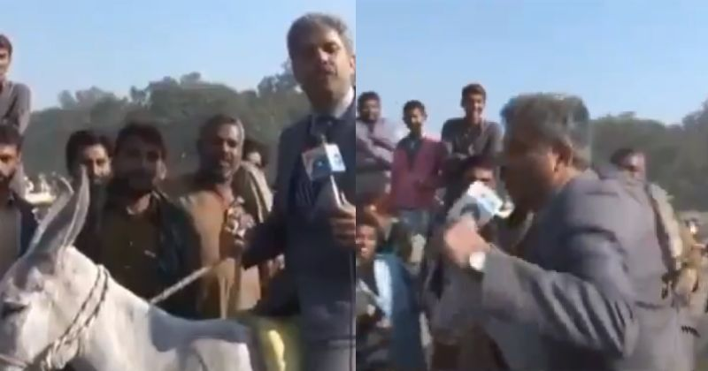 Remember Chand Nawab? Inspired By Him This Pak Reporter Sat On A Donkey, Fell Off It On Live TV