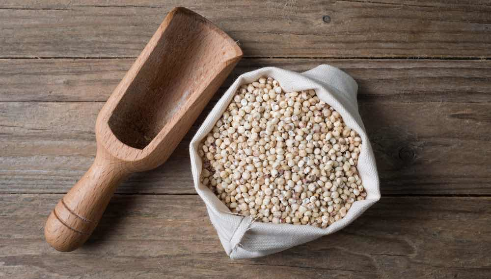 7 Reasons Why Jowar (Sorghum) Is Good For Your Health