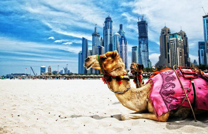 14 Reasons Why Dubai Will Ruin Indians For Life