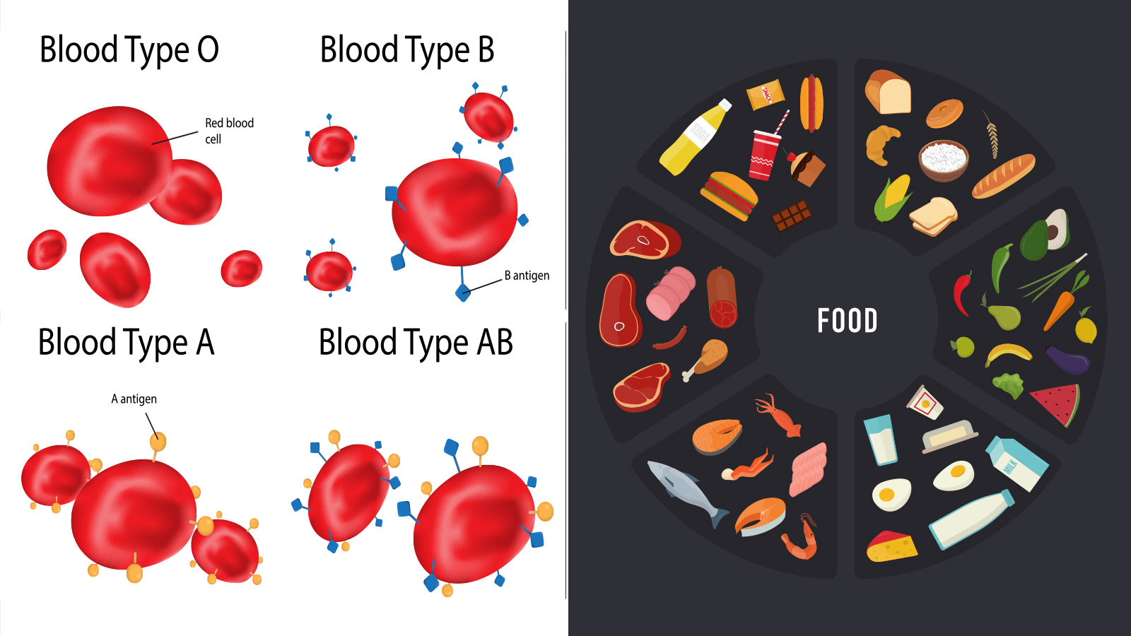 Science Explains What Foods to Eat, According to Your Blood Type