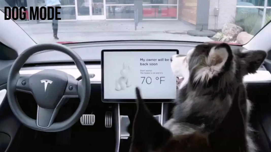 Tesla Model 3 Gets A Unique Dog Mode To Keep Your Pets Safe