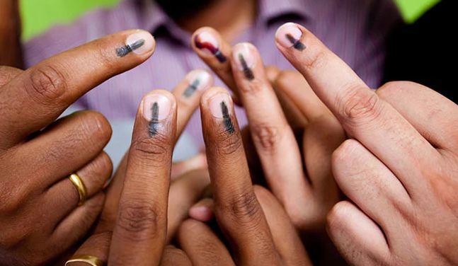 Lok Sabha Election 2019: How To Check Your Name On Voter List