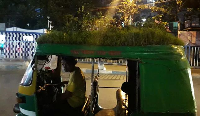 Kolkata Auto Driver Plants Garden On Vehicle To Spread Important Message