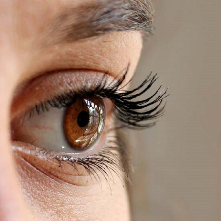 10 healthy foods to improve eyesight and reduce high power
