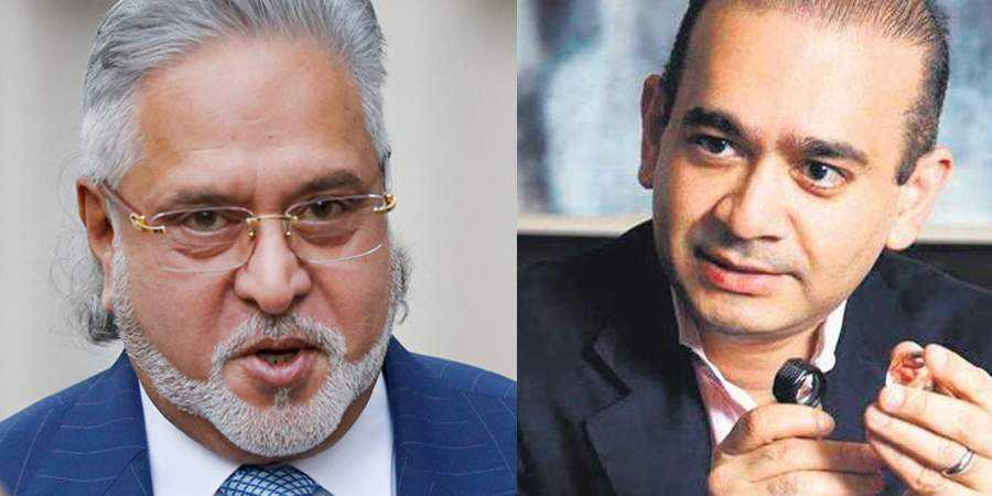 Not only Mallya and Nirav, 36 businessmen fled from country in recent past, ED informs court