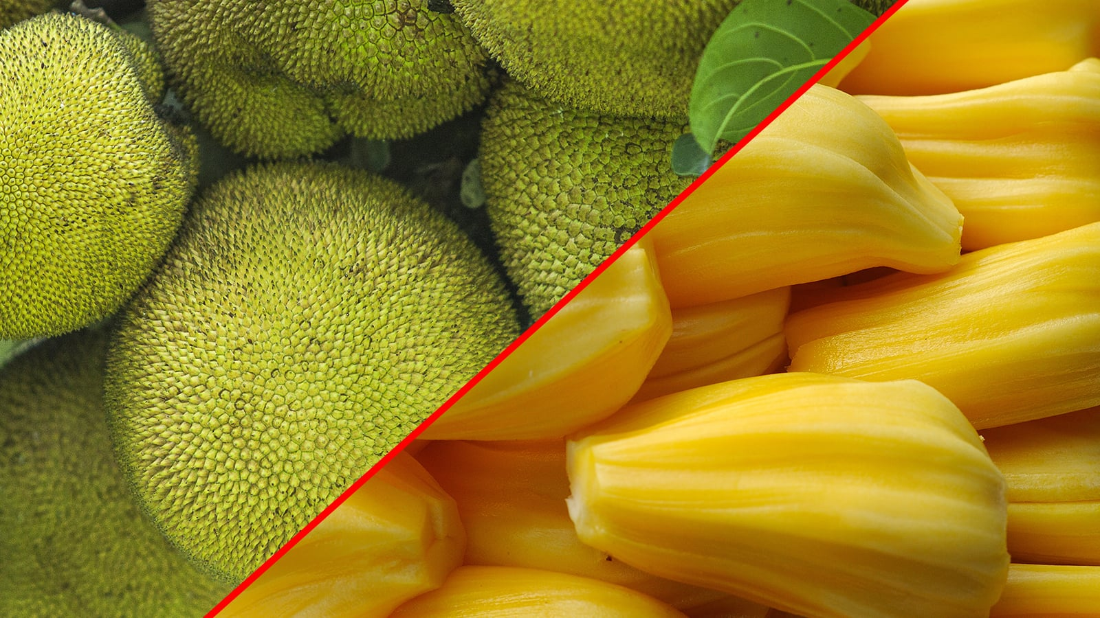 10 Health Benefits of Jackfruit