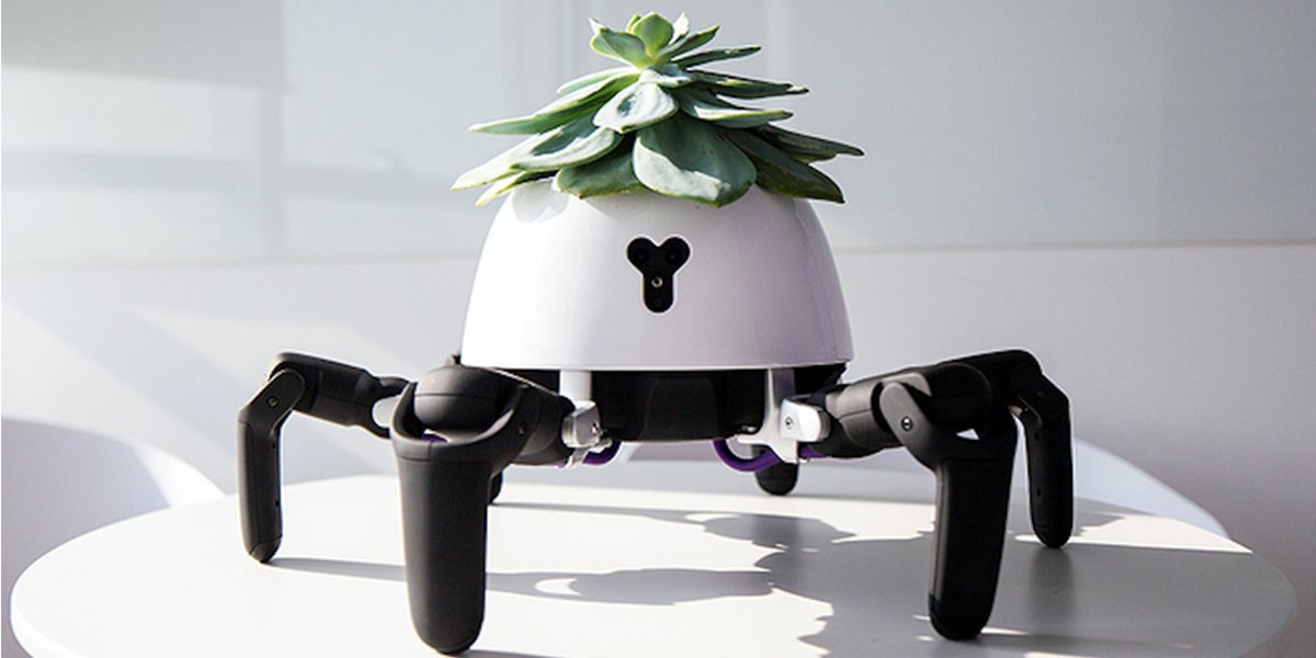 Robot Planter Follows The Sunlight And Throws Tantrum If It Is Not Watered