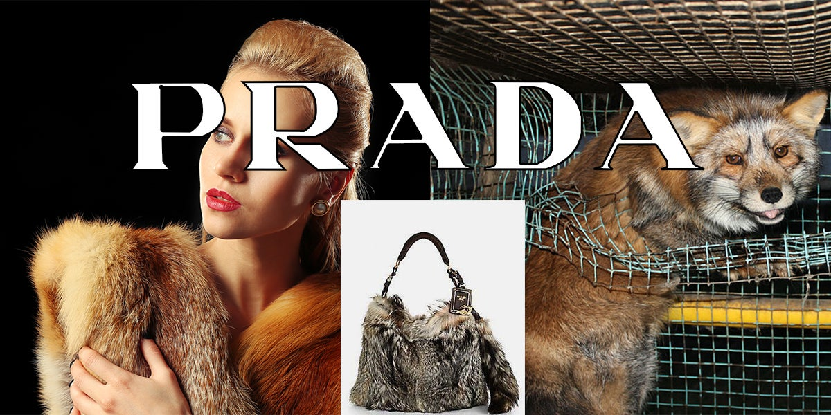 Prada Will Finally Ban Fur On All New Designs From 2020