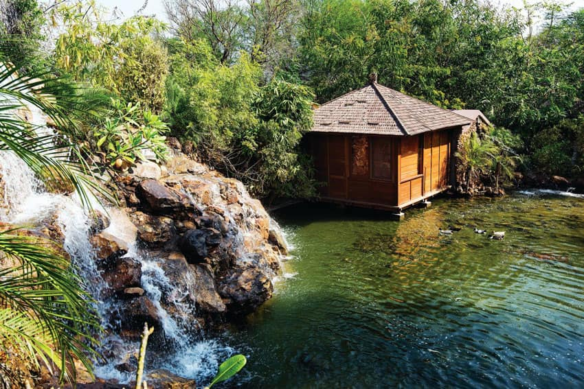 This Tree Resort Just 5 Hrs From Delhi Has Mini Waterfalls, Glass Floors & Over-Water Cottages