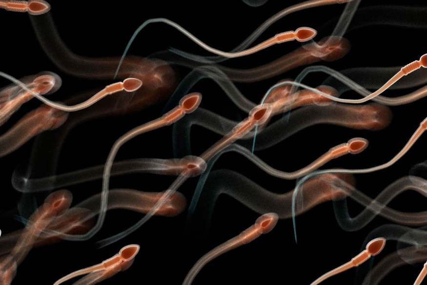 Human Sperm Retains Viability in Outer Space Conditions