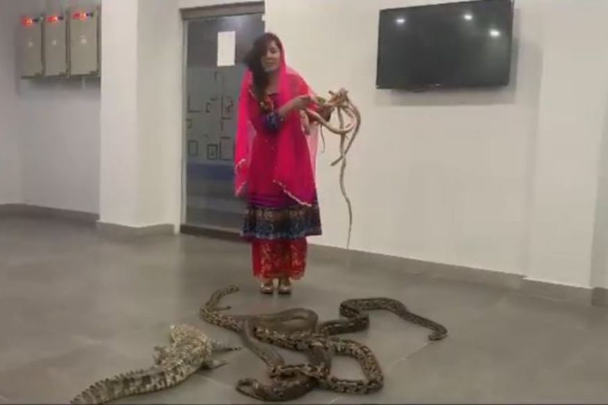 This Pakistani Pop Singer is Threatening PM Narendra Modi With Snakes and Alligators