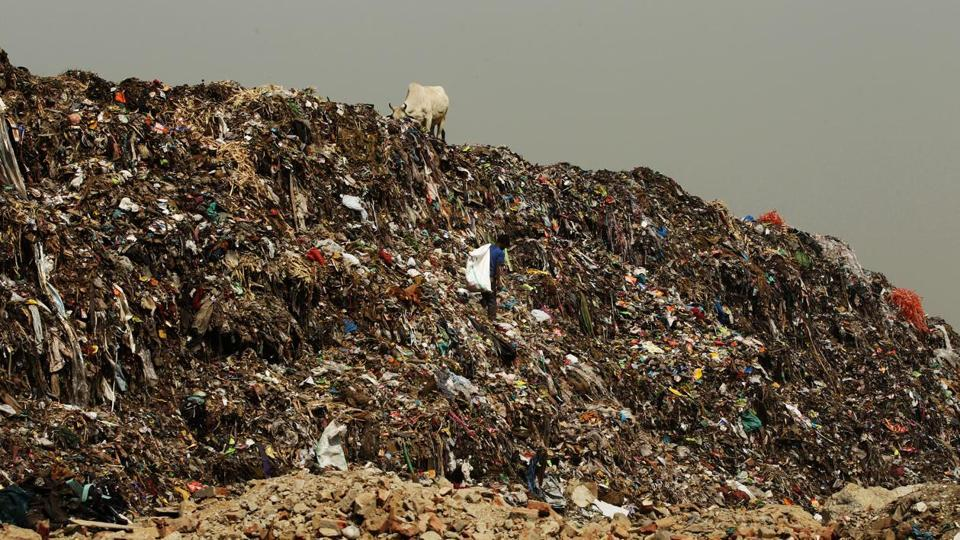 Single-use plastic likely to be banned in New Delhi