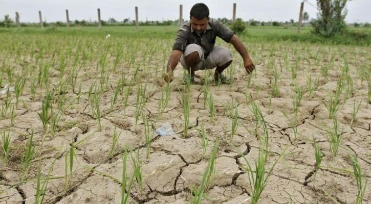 Smartphone App Helps Farmers Predict Climate Change And Save Their Crops From Destruction