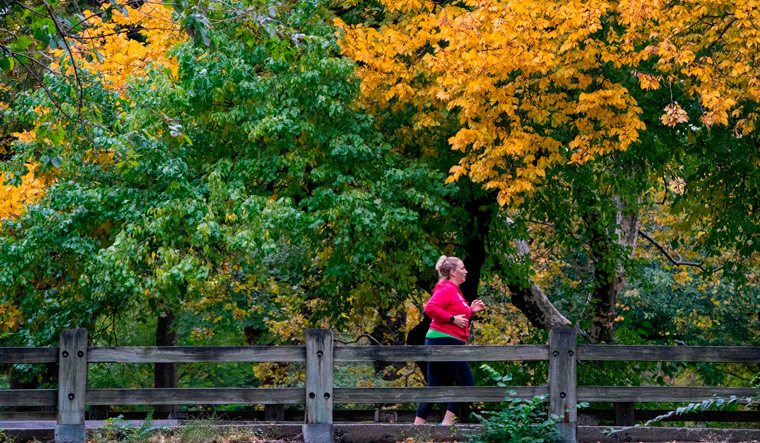 Running can lower your risk of early death