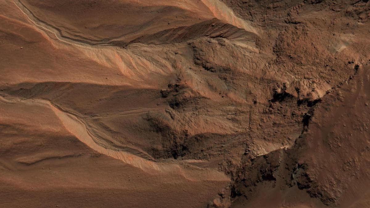 Photos Show Evidence of Life on Mars, Claims Scientist