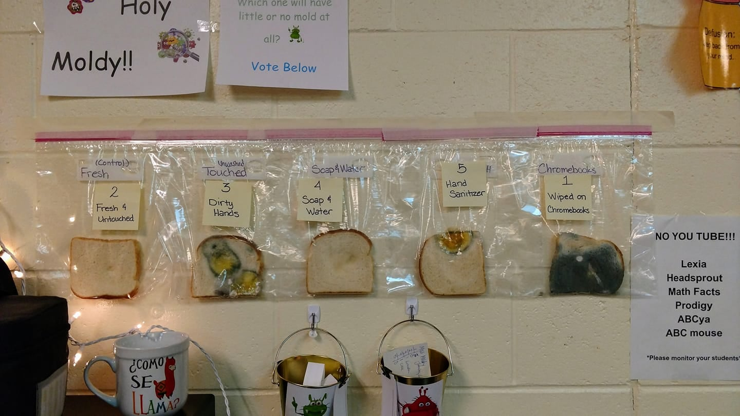 Idaho Teacher's Experiment Showcases What Happens To Bread When You Touch It With Dirty Hands