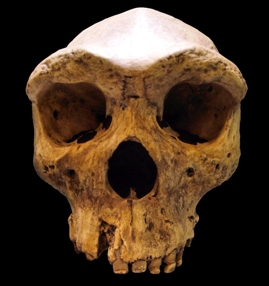 Early humans in Africa may have interbred with a mysterious, extinct species – new research