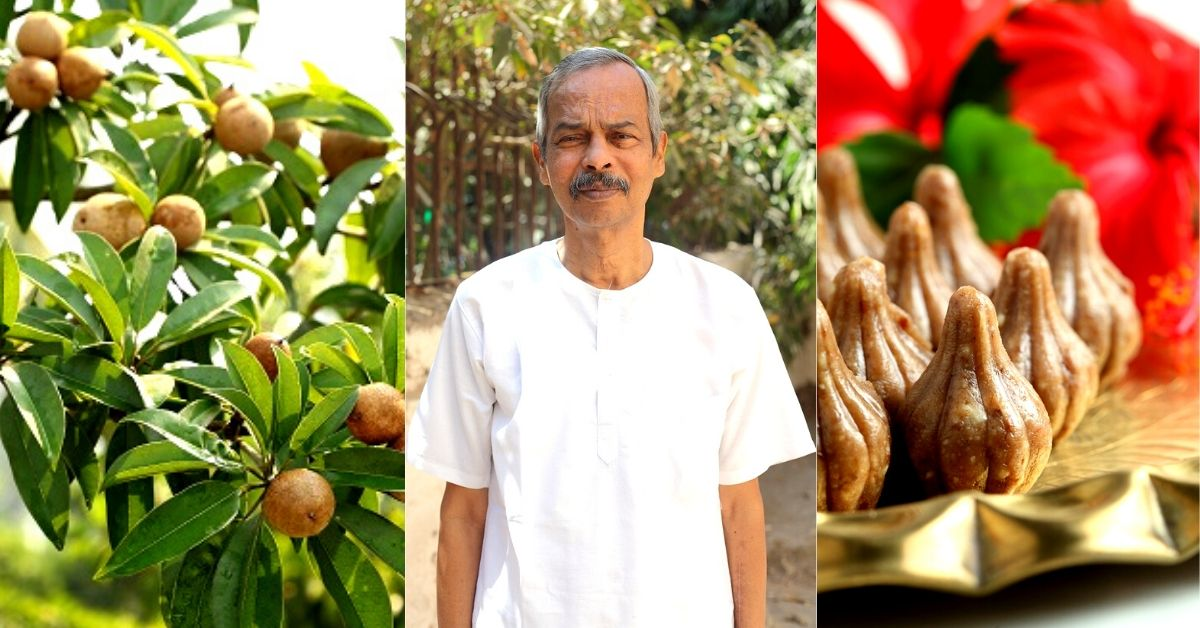 Maharashtra Man Uses Chiku in 16+ ways, Earns Turnover of Rs 1 Crore in a Year!