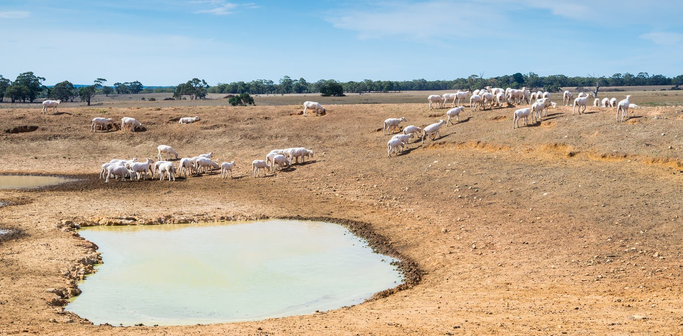 A rare natural phenomenon brings severe drought to Australia. Climate change is making it more common
