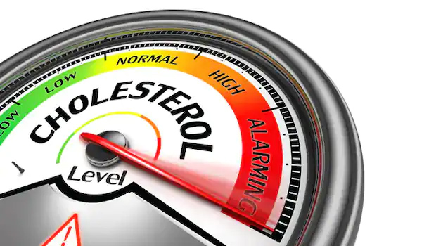 Home Remedies For Cholesterol: 5 Foods That May Help Keep Cholesterol Levels In Check