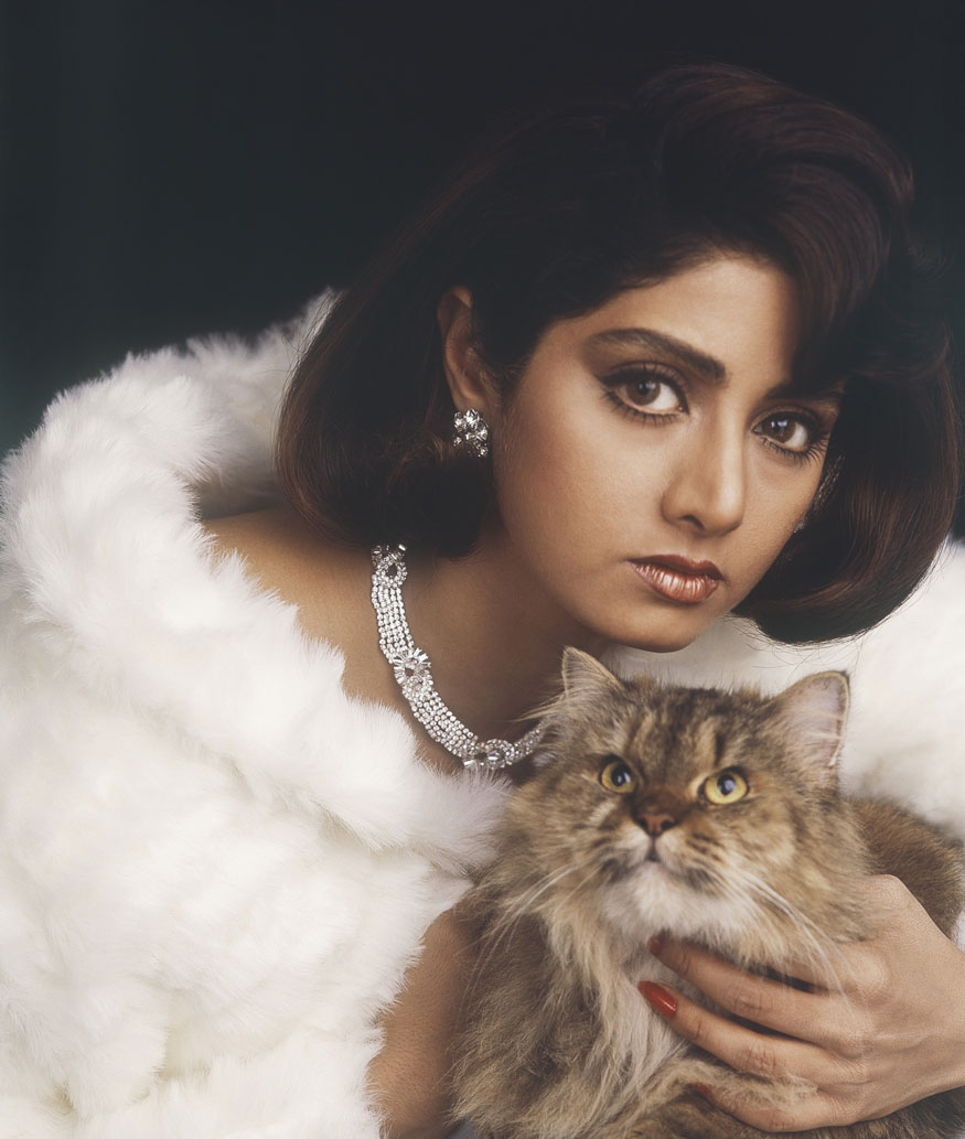 Portrait of bollywood film actress Sridevi.