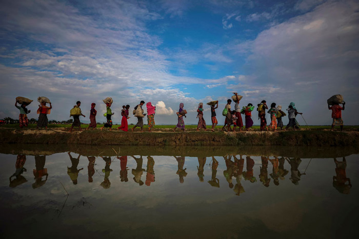 Rohingya refugees are reflected in rain water along an embankment next to paddy fields after fleeing from Myanmar into Palang Khali, near Cox