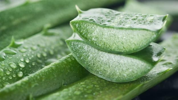 2. Applying aloe vera gel can boost the process of healing.