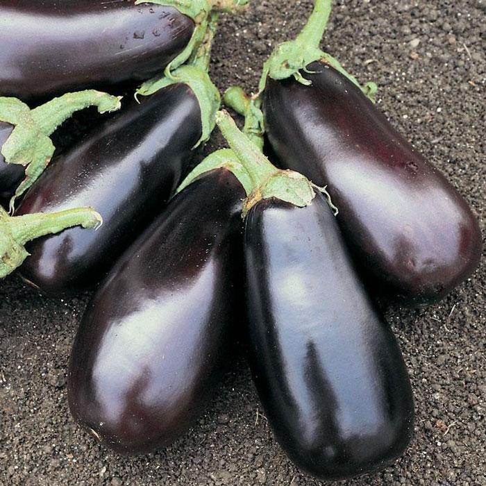 2. Eggplant