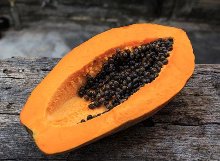 2. The presence of papin-a digestive enzyme in papaya encourages proper digestion as it breaks down proteins and cleans the digestive tract.