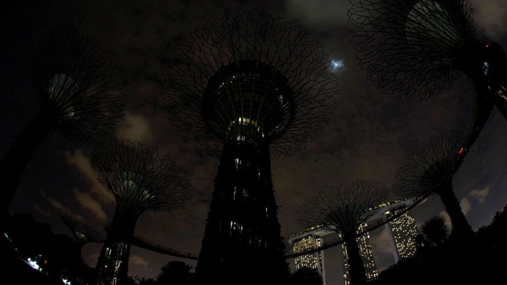 A general view of giant concrete tree-like structures called Supertrees after the lights are dimmed to mark Earth Hour, at the Gardens by the Bay in Singapore March 24, 2018.