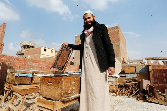 Haj Omar Abulhassan shows a beehive used in the process of treatment for a variety of ailments on the roof of his home in Cairo, Egypt.